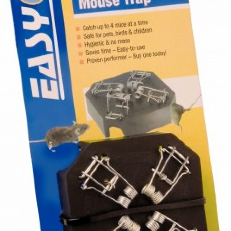 ANWAL Easy'O Mouse Trap